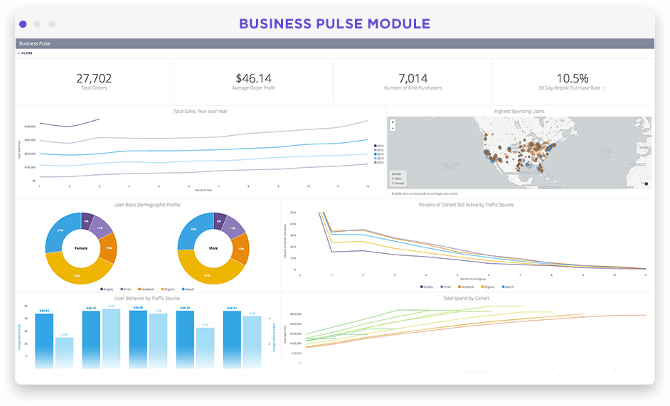 Business overview dashboard in Looker screenshot