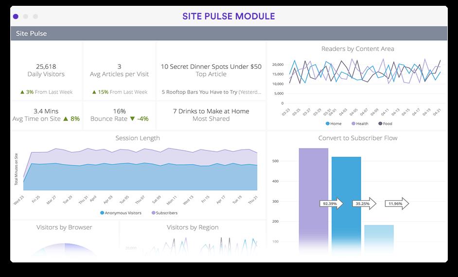 Website performance analytics dashboard in Looker screenshot